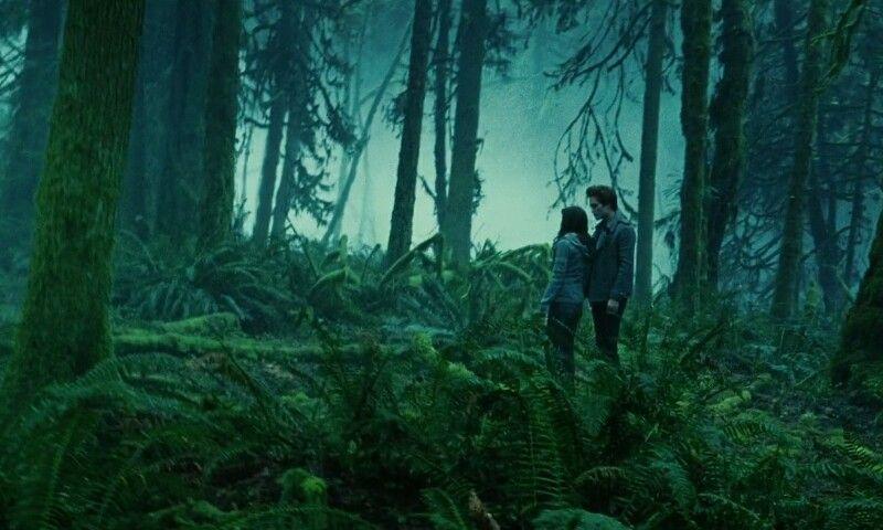 รีวิว Twilight